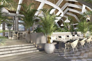 Le Palm Court révolutionne la restauration hôtelière !