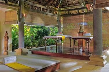 Les pavillons de soins et massages sont aménagés en pleine nature dans un environnement totalement zen