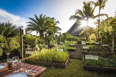 The Herb Trail : une expérience culinaire unique !