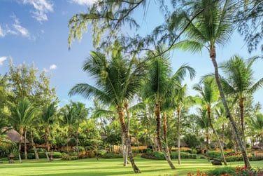 Les jardins tropicaux luxuriants de l'hôtel