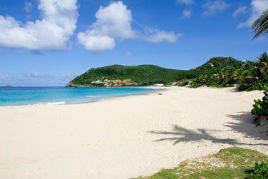 Farniente sur cette belle plage de sable blanc