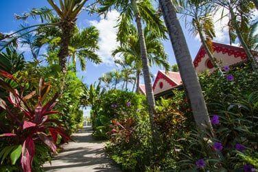 Au coeur du jardin tropical découvrez les chambres du Tom Beach