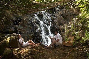 Pique-nique au coeur de la réserve Frederica entouré d'une nature dense et de cascades...