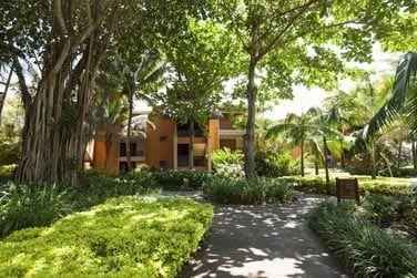 Découvrez les chambres au coeur du jardin tropical