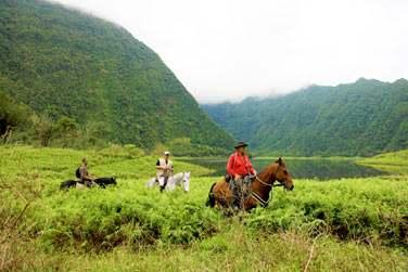 Balade à cheval près des grands étang