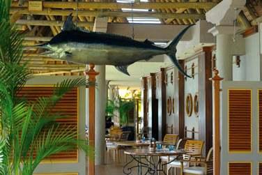 Spécialités de poissons et fruits de mer au restaurant 'Blue Marlin'