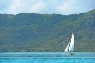 Sorties en catamaran dans l'immense lagon de la péninsule du Morne