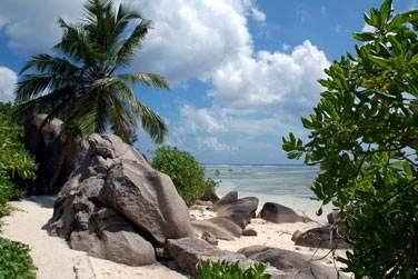 Il est temps de venir vous ressourcer dans notre petit paradis Seychellois !