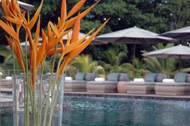 Véritable refuge tropical privé et cosy,