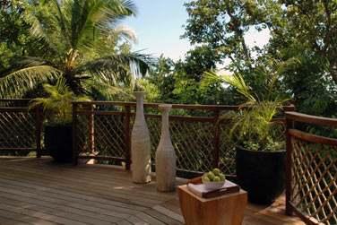 De votre terrasse, vue sur le jardin tropical et la végétation généreuse