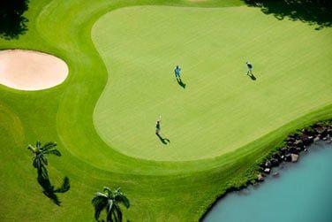 Le golf situé au coeur du Domaine de Bel Ombre est l'un des plus beaux de l'île