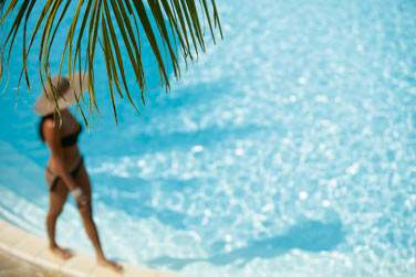 Profitez de votre séjour à la Réunion pour vivre intensément vos vacances... ou vous détendre tout simplement