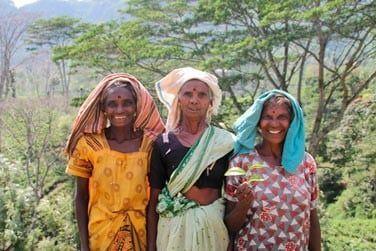 Les cueilleuses de thé ont le sourire !