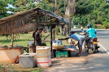 Au bord de la route, les sri lankais vendent du poisson fraîchement pêché