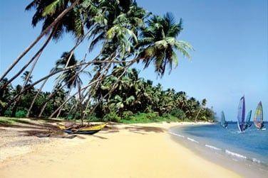 Les plages, en forme de croissant, sont bordées de cocotiers et souvent animées