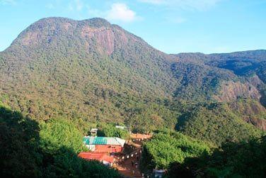 Les montagnes verdoyantes du Sri Lanka