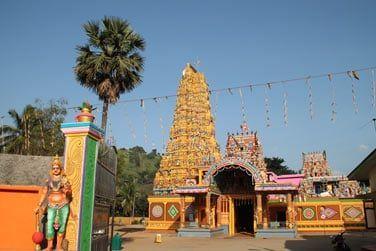 Bienvenue au Sri Lanka, terre de couleurs !