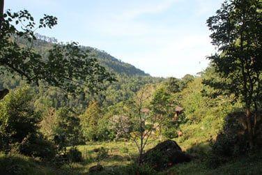 Des paysages de toute beauté encore très différents du reste de l'île