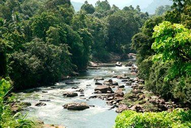 Kitulgala - Au coeur des montagnes du centre, vous découvrirez une nature luxuriante.