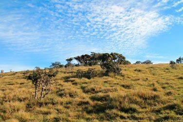 Si vous aimez la randonnée, optez pour une balade au coeur du parc national d'Horton Plains