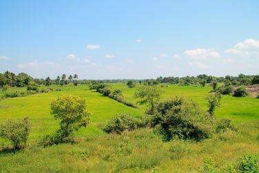 On ne se lasse pas des paysages de rizières et plantations !