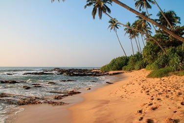 Début du voyage au Sri Lanka...