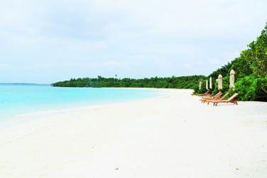 Un véritable paysage paradisiaque !